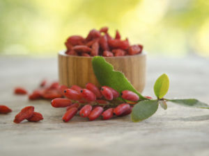 Как отличить ягоды Годжи от барбариса