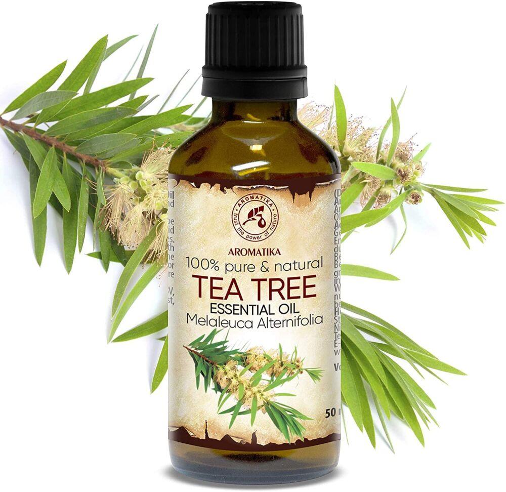 Масло чайного дерева - полезные свойства