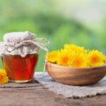 Одуванчиковый мед - польза для организма