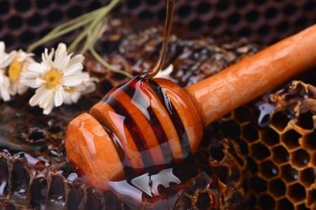 Гречишный мед: природное лекарство
